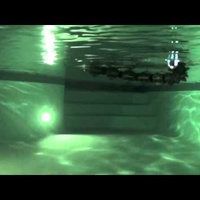 This Robotic Water Snake is Both Graceful and Utterly Terrifying | Strange days indeed... | Scoop.it