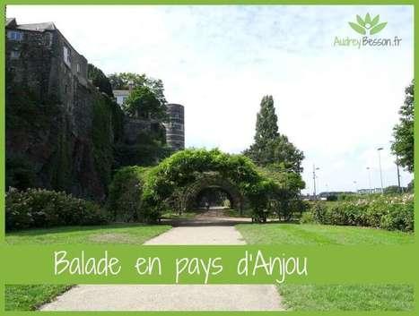 Balade en pays d'Anjou | Détente et bien être | Scoop.it