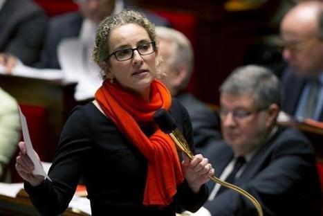 Lanceurs d'alerte: Le Parlement adopte pour la première fois un texte écologiste | Nouveaux paradigmes | Scoop.it