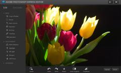 Photoshop Express Editor | ucitelji | Scoop.it