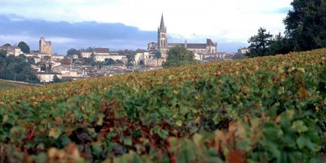 Trois nouvelles appellations sur la Route du vin   Oenotourisme et idées rafraichissantes   Scoop.it