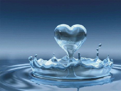 cover photo love is life 2014 - photo love chaima 2014   photo love   Scoop.it