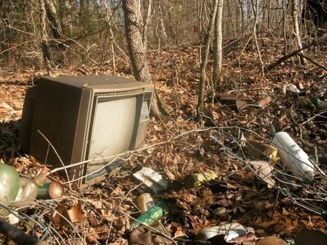 Om fjernsynets død | Skolebibliotek | Scoop.it