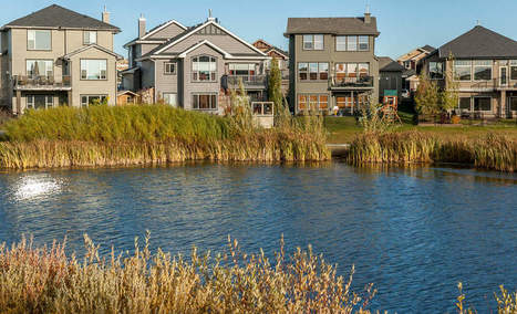 Building sustainability into suburban sprawl | Farming, Forests, Water, Fishing and Environment | Scoop.it