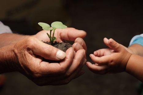 Comer como es debido: Beneficios de la Agricultura Ecológica ... | Agricultura ecológica y tintes naturales | Scoop.it