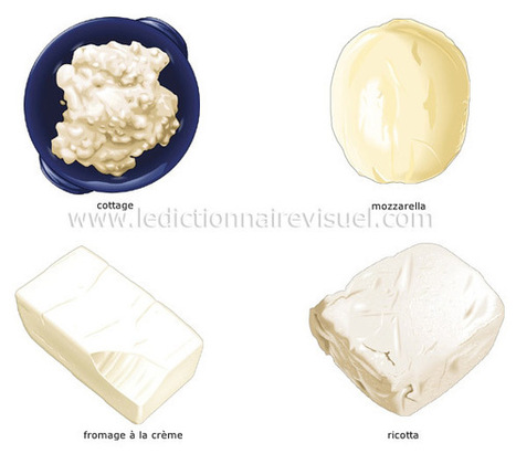 La classification des fromages | Dictionnaire Visuel | Remue-méninges FLE | Scoop.it