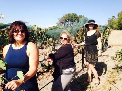 Stagecoach Company Wine Tours - Solvang, CA - Reviews - Yelp | Stagecoach Wine Tours | Scoop.it