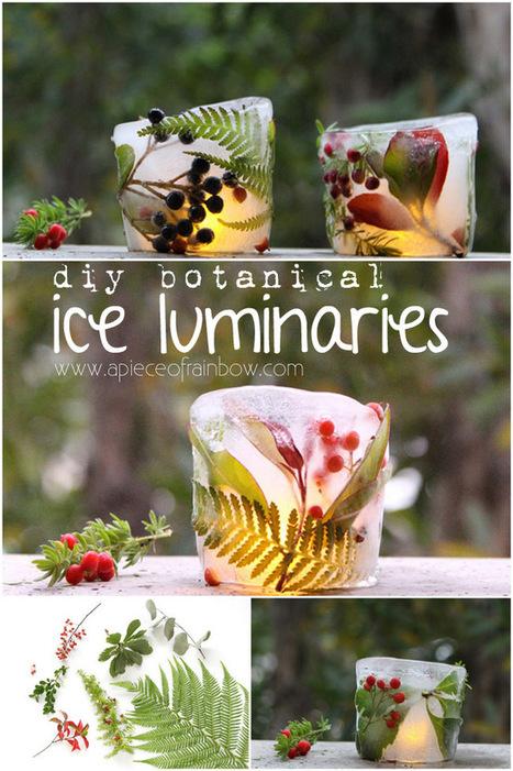 Make Botanical Ice Luminaries | wigs I like | Scoop.it