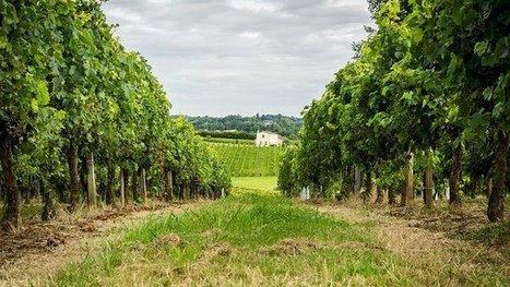 Une semaine pour aider les agriculteurs à transmettre leur exploitation | Agriculture en Dordogne | Scoop.it