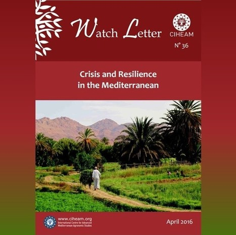 "CIHEAM Watch Letter N.36 - ""Crisis and Resilience in the Mediterranean"" - Istituto agronomico mediterraneo Bari 