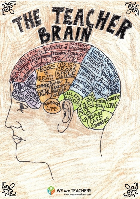 What Does A Teacher's Brain Look Like? - Infographic | Critical Thinking Thesaurus | Scoop.it