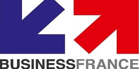 [Rencontres] 31 mars 2015 : Business France organise les rencontres franco-tunisiennes de la formation et du e-learning | learning-e | Scoop.it