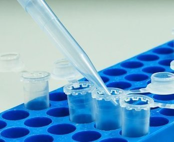 Bold Innovation Program Fast-Tracks Precision Medicine Research | Scinnovation | Scoop.it