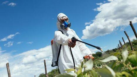 Polluants chimiques : les chercheurs s'inquiètent de leur utilisation massive | Toxique, soyons vigilant ! | Scoop.it