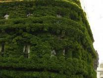 Green building watch | Top Ten Green Building MegaTrends for 2013 | Sustain Our Earth | Scoop.it
