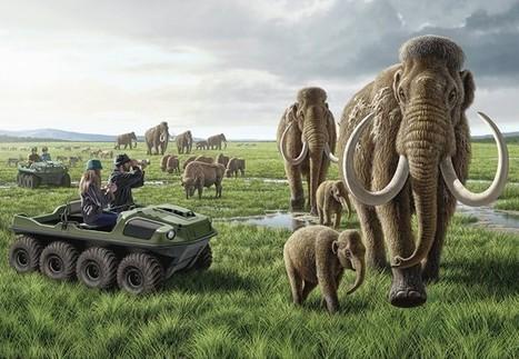 Le dernier Juracirque park : vite, vite, clonons des mammouths ! Avant que les éléphants ne s'éteignent… | sciences I 3> | Scoop.it