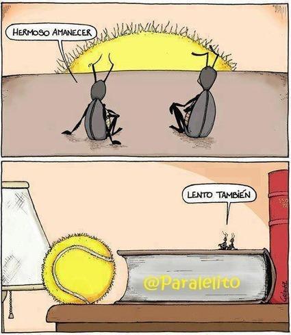 Twitter / Paralelito: COSAS DE HORMIGAS. ... | www.anthouse.es | Scoop.it