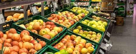 'Omzet duurzame voeding groeit naar € 1,3 mrd' | Foodservice | Scoop.it
