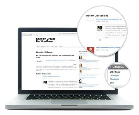 LinkedIn Groups for Wordpress Plugin | My Top Wordpress Plugins | Scoop.it