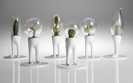 Indoor garden design ideas for green interiors | Urban Agriculture and Design | Scoop.it
