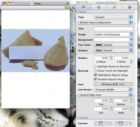 Introduction to iPhone SDK Development | Iphone SDK Tutorial | Scoop.it