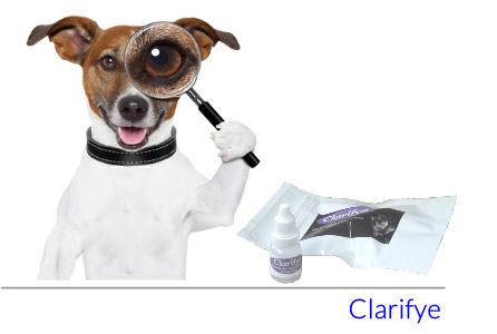 Dog Cataract/Dry Eye Drops | Bulldog Essentials | Scoop.it