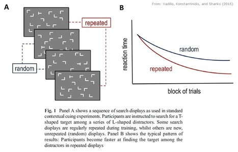 "Evidence for ""Unconscious Learning"" Questioned - Neuroskeptic 