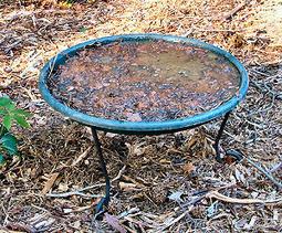 Experimenting in a Habitat Garden   Annie Haven   Haven Brand   Scoop.it