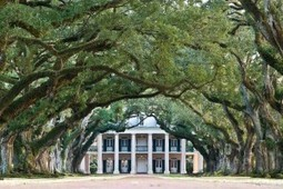 Jawsnap | Oak Alley Plantation: Things to see! | Scoop.it