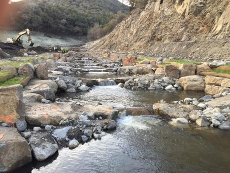 Carmel River runs new course after dam removal - KSBW The Central Coast | Fish Habitat | Scoop.it