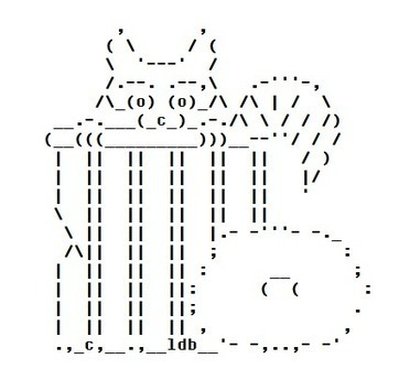 Raccoon Junk Collector | ASCII Art | Scoop.it