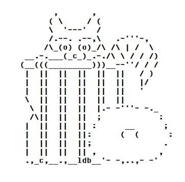 Raccoon Junk Collector | ASCII Art | Scoop.it