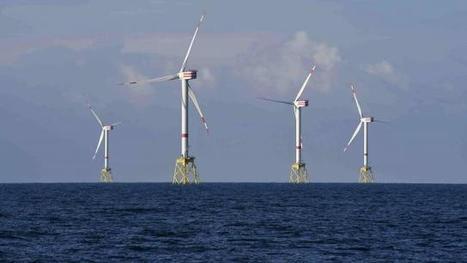 Economie à Flers. Ils surfent sur les énergies marines | EMR | Scoop.it