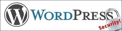 Sécuriser son blog sous Wordpress ~ Cr@zy WS | La veille du WebDeveloper | Scoop.it