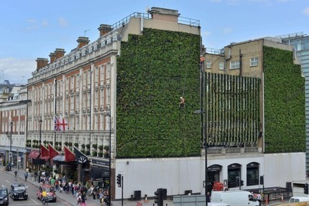 "London's Largest ""Living Wall"" 