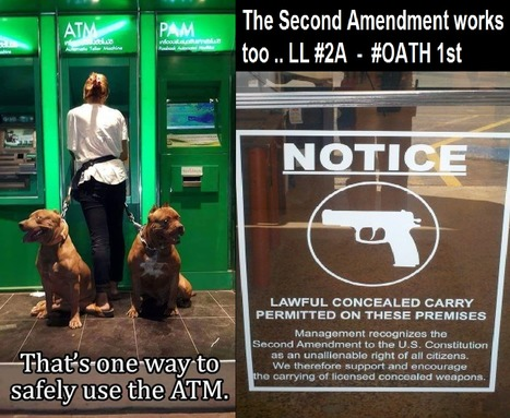 LL #2A - #OATH 1st | Criminal Justice in America | Scoop.it