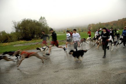 Canicross: l'homme et le chien unis dans le sport | Étienne Fortin-Gauthier | Actualités | Le sport avec un chien - Sport with dogs | Scoop.it