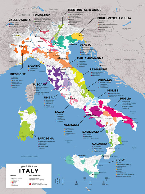 Le Marche in the Italian Wine Exploration Map by Wine Folly | Wines and People | Scoop.it