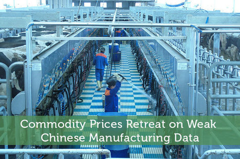 Commodity Prices Retreat on Chinese Manufacturing Data | Airline Miles | Scoop.it