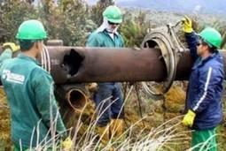 Oleoducto Trasandino de Ecopetrol, en el Putumayo, fue atacado por las Farc | Vox Populi | Ecopetrol noticias | Scoop.it
