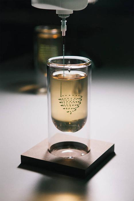 The 3D printed Drink   DigitAG& journal   Scoop.it