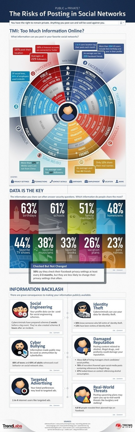 Facebook, Twitter, Google+, Pinterest – Are You Sharing Too Much Online? [INFOGRAPHIC] - AllTwitter | En el Medio (Social) | Scoop.it