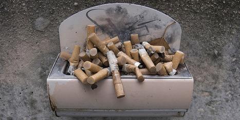 Recycler les mégots, le pari gagnant d'un jeune entrep