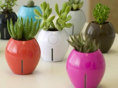 Love Life: Self-Watering Planters | Truth, Beauty, Love | Scoop.it
