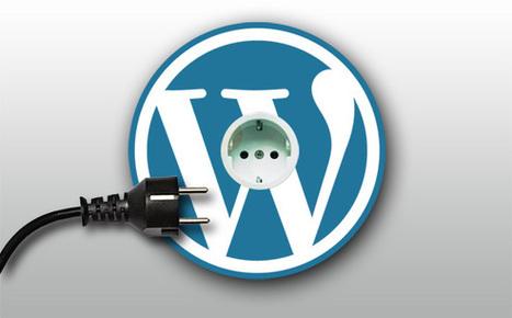 WordPress Plug-in Development – Add powerful features & functionalities to your wordpress blog/site in quick time! | Wordpress Development | Scoop.it