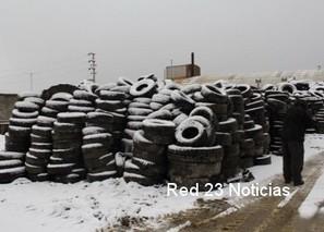Red 23 Noticias – Tierra del Fuego » La ONG Manekenk comenzó la fiscalización | Asociación Manekenk | Scoop.it