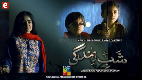 Shab E Zindagi Episode 6 - 4 March 2014 By Hum Tv | watch pakdramas | Scoop.it