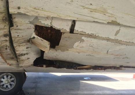 Sriwijaya incident 11-OCT-2016 Boeing 737-3Y0 PK-CKF | Aviation Loss Log from GBJ | Scoop.it