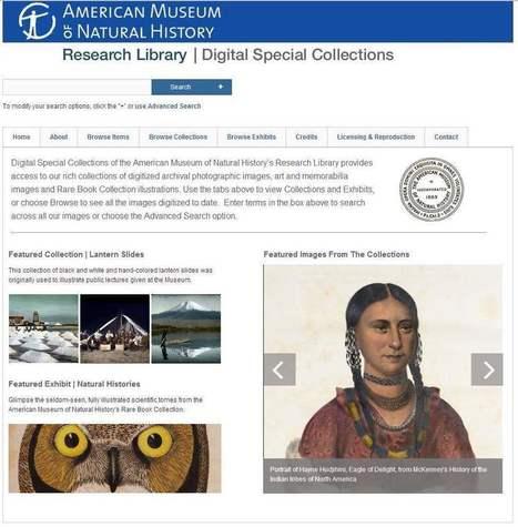 Consulter les collections de photos du Muséum américain d'histoire naturelle | Les Infos de Ballajack | CDI RAISMES - MA | Scoop.it