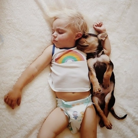 """Toddler Naps With His 2-Month-old Puppy Every Day [13 pictures] 
